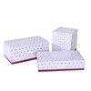 2 Ply Layer and Box Tissue Style facial tissue