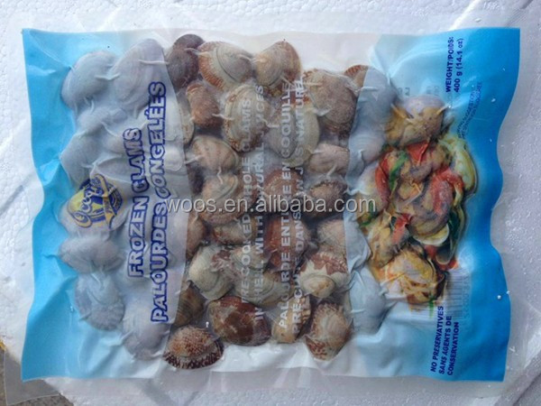 hot sale frozen shell whole baby clam