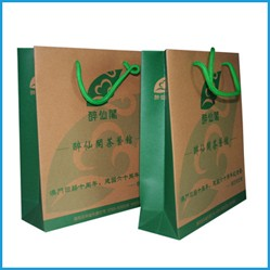 Custom advertisement paper bags with pp rope handles