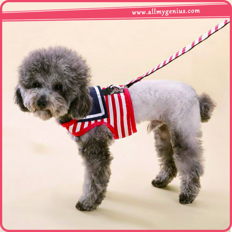 Dog collar strap ,p1w887 weight pulling dog harnesses for sale