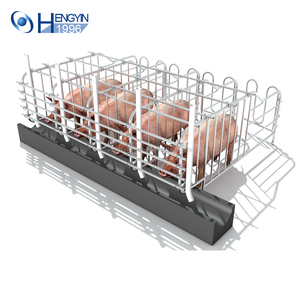 Hot Sell Galvanized Livestock Equipment Hog Gestation Crates