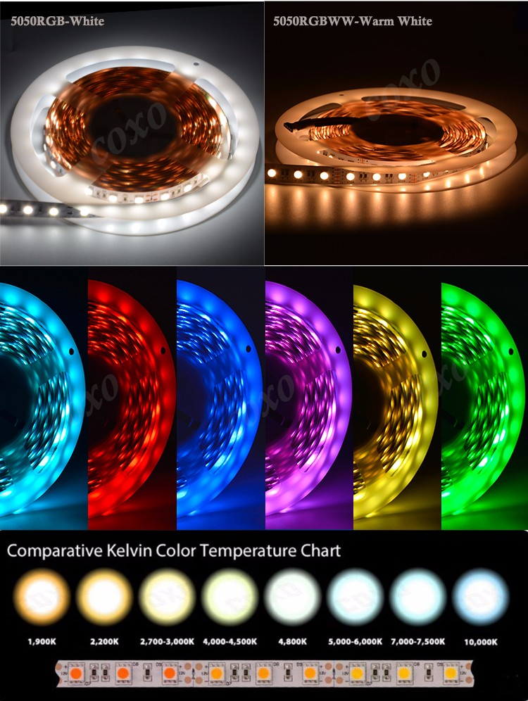 4 Chips in 1 LED 10mm SMD 5050 High Bright Full Color Changing RGB RGBW Led Strip with Remote Control