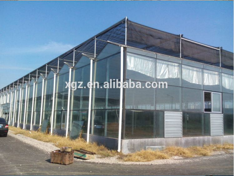 High quality commercial Chicken house With low price