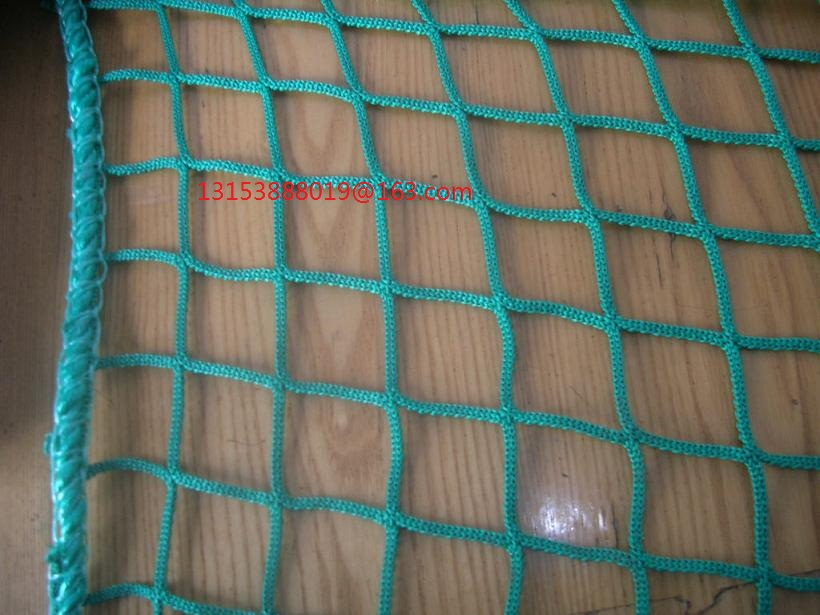 plastic <strong>netting</strong> for fish or sport or safety