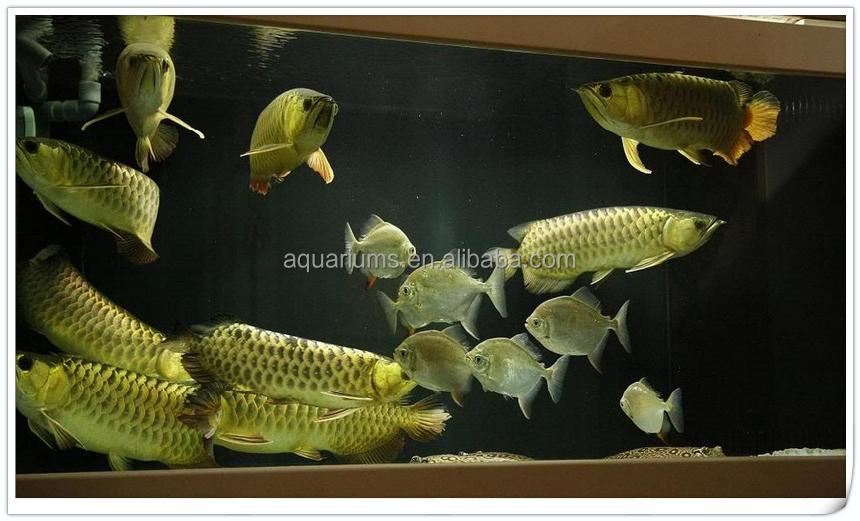 Biopro Brand Freshwater Aquarium Internal Filters Bio Filter In ...