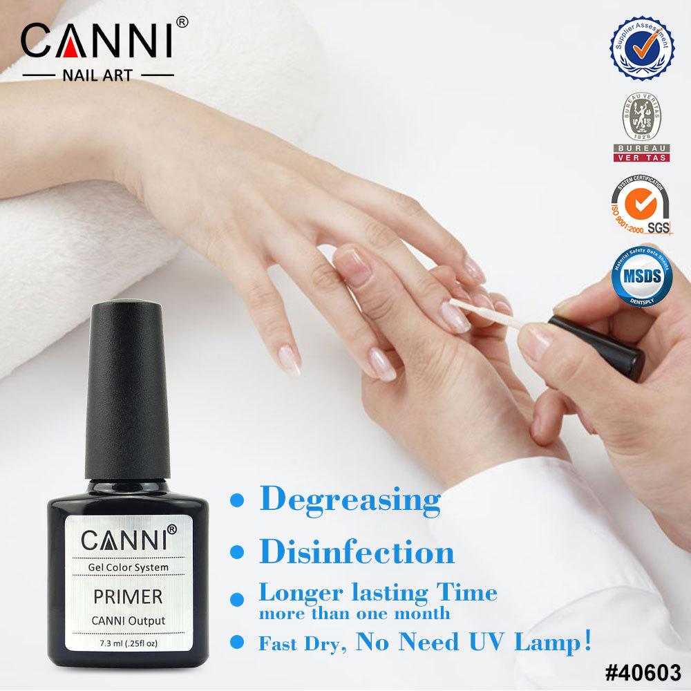 40603j Canni Nail Art Professional Use Desiccant Acrylic Primer ...