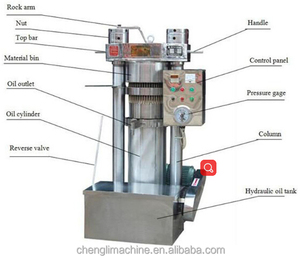 China Professional Olive Oil Press Sesame Oil Presser Cold oil Press Machine