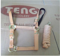 Nylon horse halter with lead rope