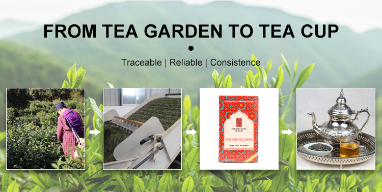 High quality Chunmee Green Tea 41022 Chinese Green Tea Organic - 4uTea | 4uTea.com