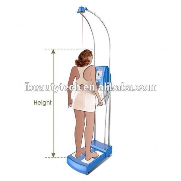 alibaba China body composition analysis bmi body fat measurement machine GS6.6