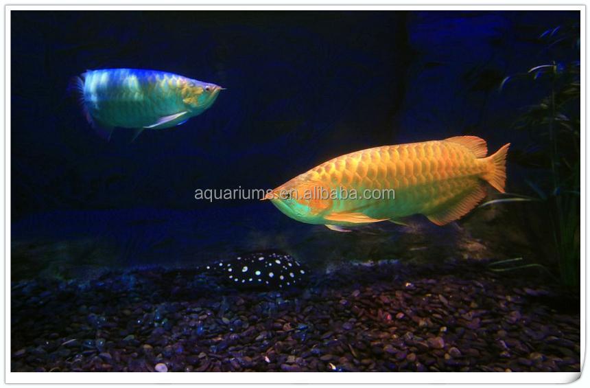 Biopro Brand Aquarium Canister External Filters Tropical Fish ...