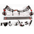 Archery Supplies Shooting Compound Bow and Arrow Set for Competitive Game Hunting Aluminium Alloy Riser CNC