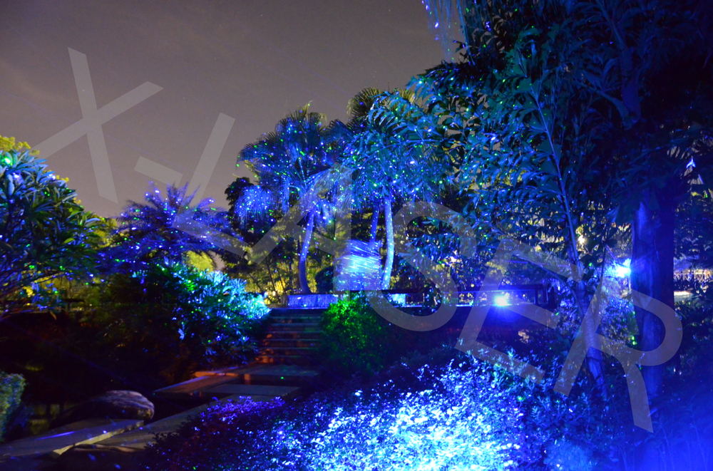 Premier Christmas Laser Light Projector