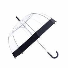 2017 new dragonfly transparent disposable umbrella for man
