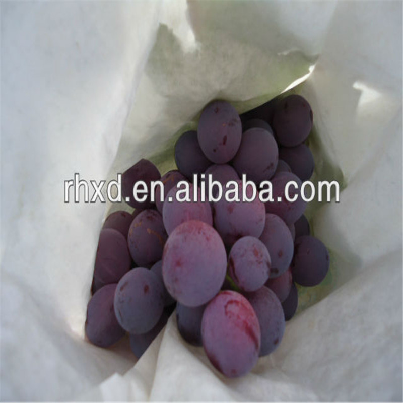 wholesale table grapes prices China grape with high quality