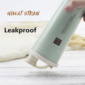 Free Sample Wheat Straw Reusable Various Color Shaker Bottle Protein
