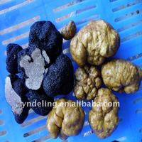 money saved!!! supply 2011 new crop black truffle(fresh/frozen/dried)