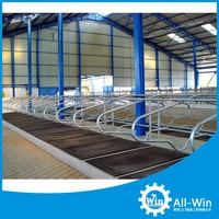 cattle cubicles separate free cow stalls for livestock