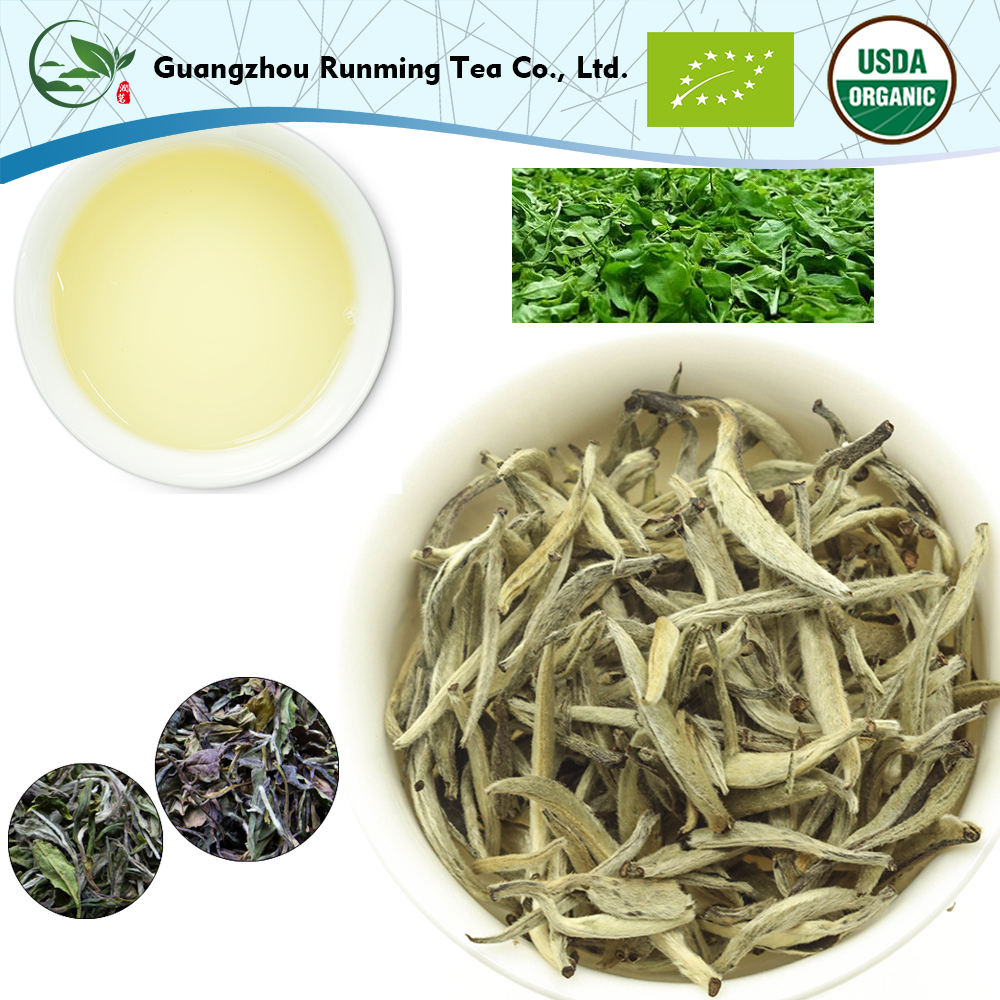 Latest Popular OEM Package Silver Needle Jasmine Flavour White Tea