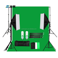 Professional photography photo studio 12*55W fluorescent video lighting kit for wholesale