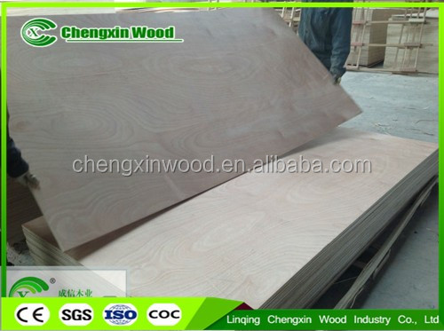 1220x 2440 poplar plywood sheet / cheap plywood / birch plywood