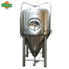 stainless steel cylinder conical beer fermenter vessel CT CK tanks
