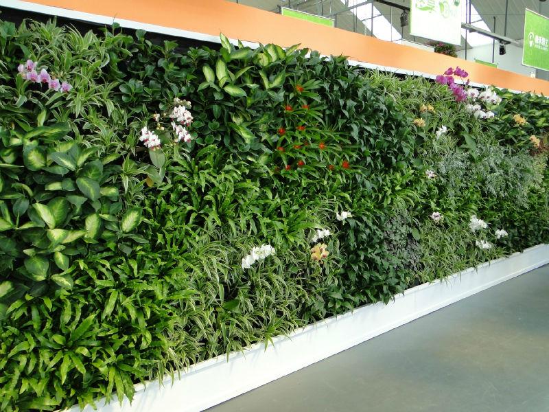 Sj planta artificial de las paredes de las plantas que Plantas para paredes verdes