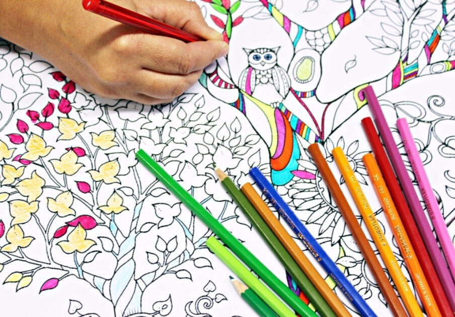 Coloring Book And Crayons In Bulk : Kids books wholesale suppliers and