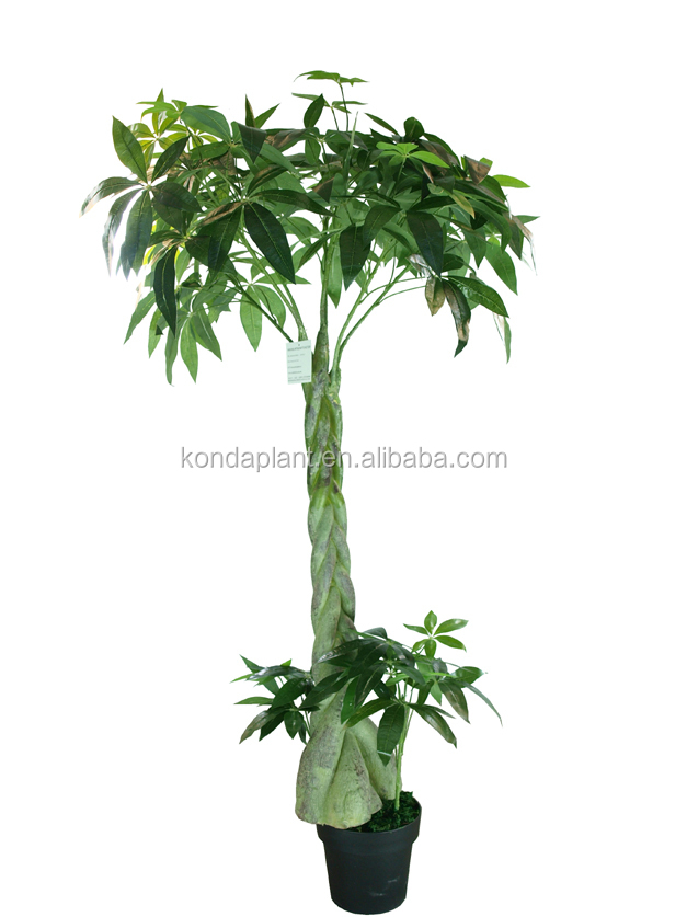 Artificial Plants And Trees Artificial Dracaena Fragrans