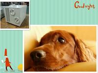 Air Cooled Pet Air Conditioner / Animal Air Conditioner