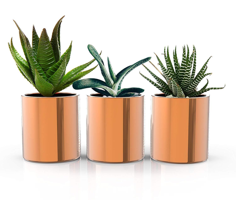 STRATFIELD HOME DESIGN Copper Succulent Plant Pots - Premium Set of 3 Mini Indoor Planters - Perfect home decor for succulents, cactus plants, and herb gardens!