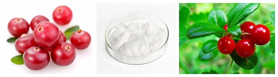 Materia prima de grado cosmético SOST 100% Polvo puro de Arbutina alfa-arbutina