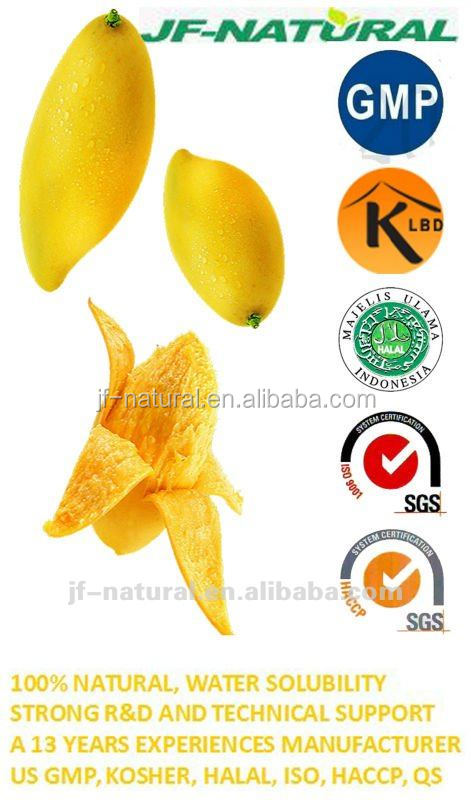 mango Extract Beverage Powder Natural Fruit Flavor Powder factory Spray Dried Mango Powder