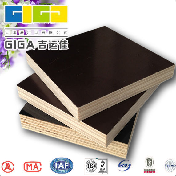GIGA China manufacture shouguang plywood