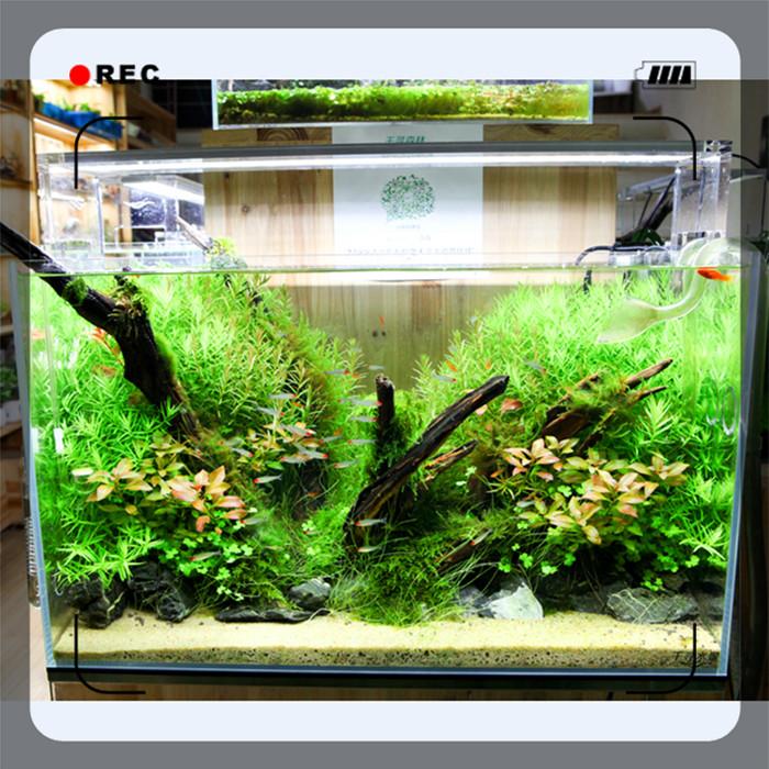 High Intensity Acrylic Material Lamp Holder Led Aquarium Light For ...