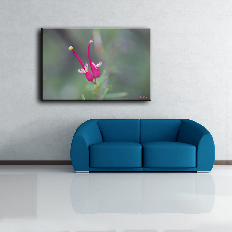 Beautiful delicate single pink flower wall hanging canvas decoration painting