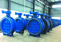 API609 Standard export to the Middle East area 44'' butterfly valve factory