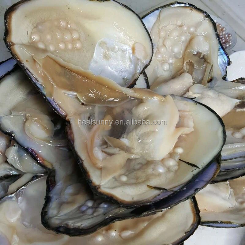 100Pcs Akoya Oysters Pearl Freshwater 7~8mm Individually Wrapped Wholesale