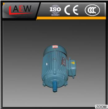 YD-160L-4/2 Ac Adjustable Electric Motor used for chemical machinery