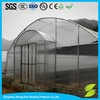 High quality blue flim for greenhouse