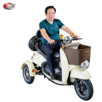 Adults Electric Tricycle 3 Three Wheels Electric Scooter for Elder CE Approval