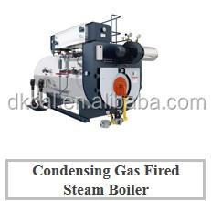 condensing steam boiler.JPG