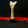world cup trophy metal awards with crystal wooden trophy base