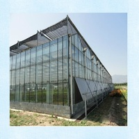 Professional multi span galvanized steel agricultural glass greenhouse