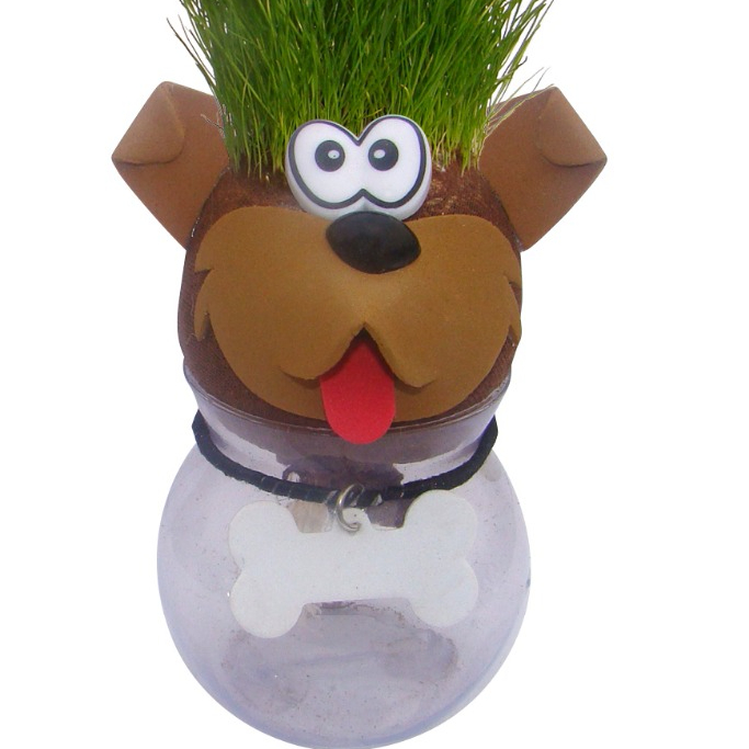 Cute Birthday Gifts For Him Grass Head Guys Business Thank You