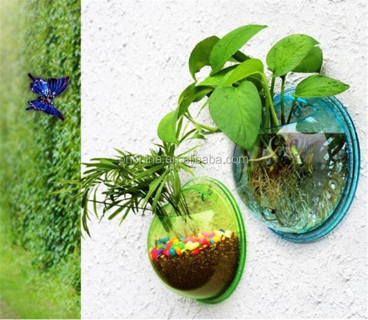 Shenzhen Factory Direct Sale Acrylic Fish Tank Wall Mounted