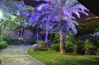 2015 New Outdoor Laser Light Waterproof Laser Light Twinkling Star ...