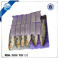Factory wholesale FDA certificate Express cold delivery seafood plastic reusable ice pack