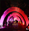 LED lighting custom different colors inflatable arch