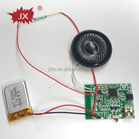 USB recordable sound module